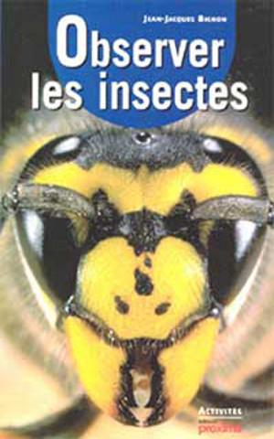 Observer les insectes